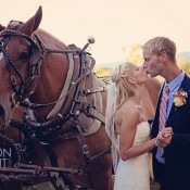 mountain top wedding with horse